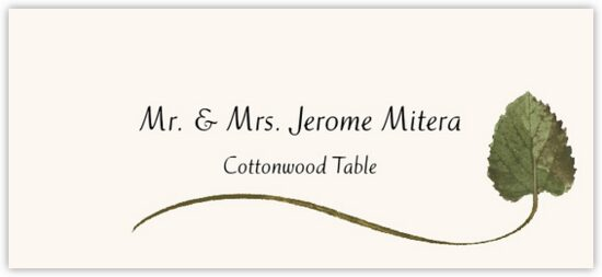 Cottonwood Wispy Leaf Autumn/Fall Leaves Place Cards