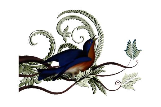 Birds and Butterflies Elle Blue Bird Artwork