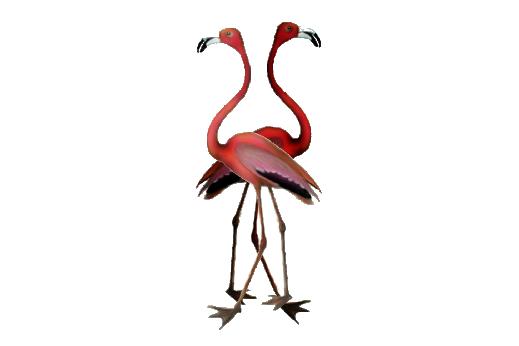 Birds and Butterflies Flamingos Artwork