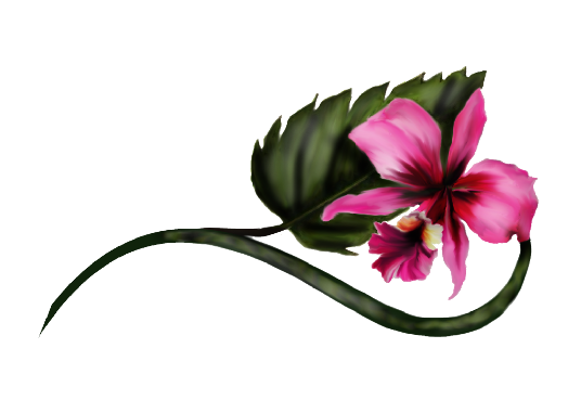 Spring Flowers, Autumn Leaves, Grapes Boat Orchid Artwork