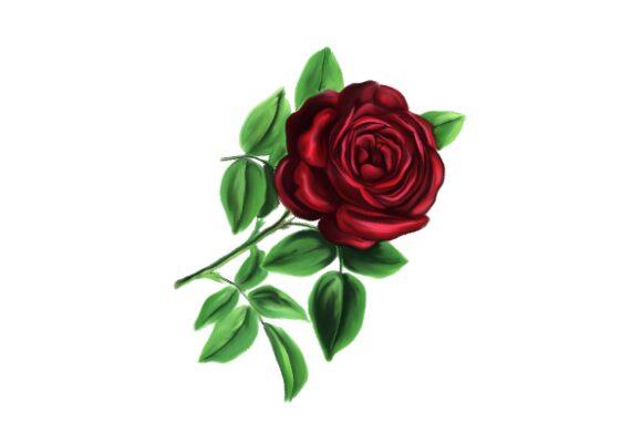 Spring Flowers, Autumn Leaves, Grapes Lamotte Rose Artwork