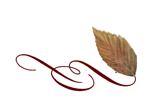 Spring Flowers, Autumn Leaves, Grapes Leaf Flourish 12 Artwork