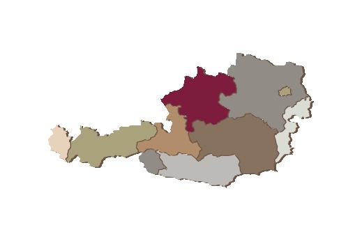Cultural Illustrations Map of Austria Artwork