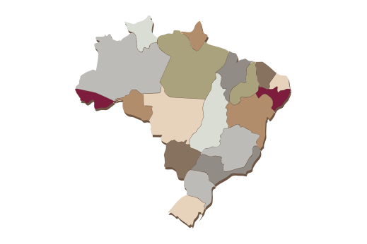 Cultural Illustrations Map of Brazil Artwork