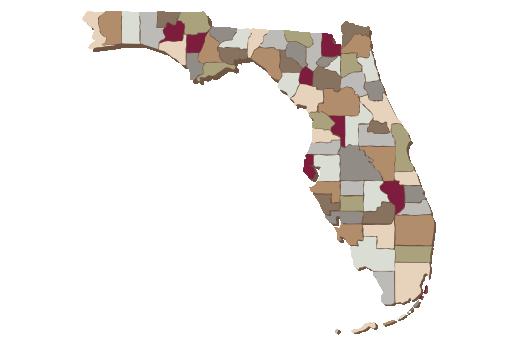 Cultural Illustrations Map of Florida Artwork