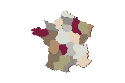 Cultural Illustrations Map of France Artwork
