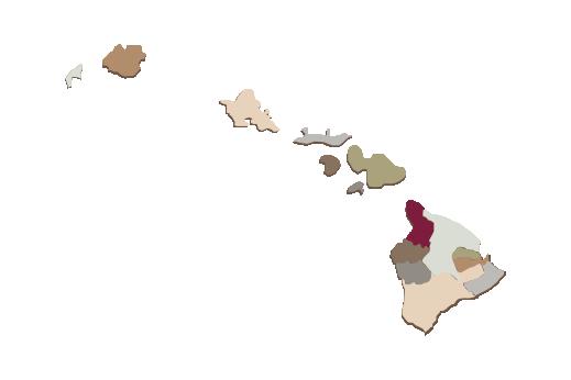 Cultural Illustrations Map of Hawaii Artwork