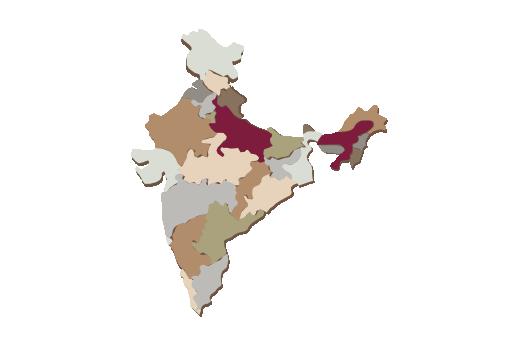 Cultural Illustrations Map of India Artwork