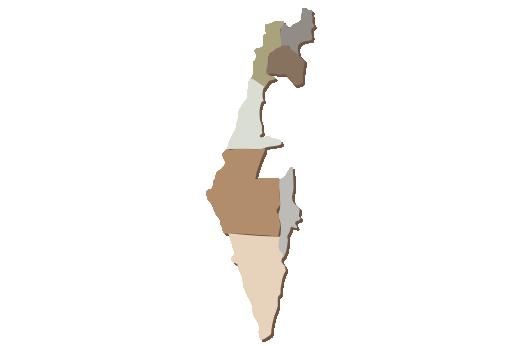 Cultural Illustrations Map of Israel Artwork