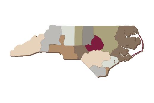 Cultural Illustrations Map of North Carolina Artwork