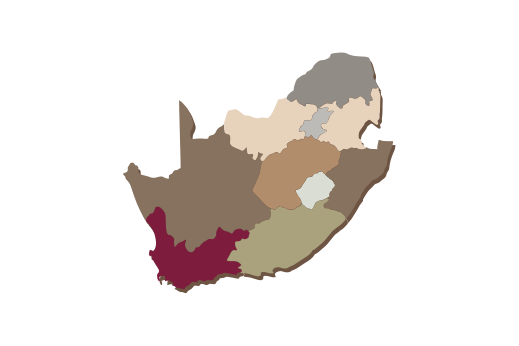 Cultural Illustrations Map of South Africa Artwork