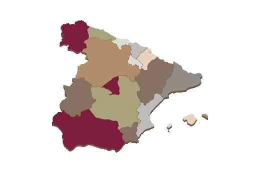 Cultural Illustrations Map of Spain Artwork