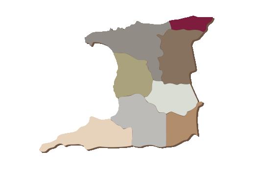 Cultural Illustrations Map of Trinidad Artwork