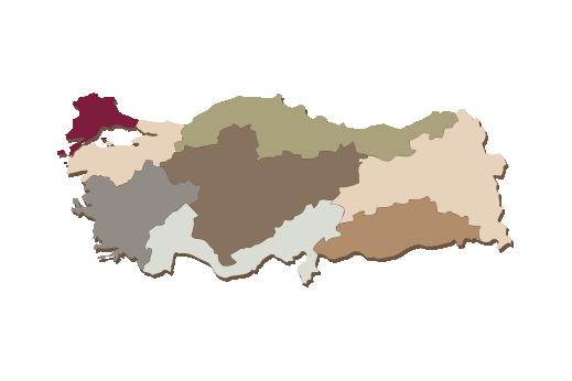 Cultural Illustrations Map of Turkey Artwork