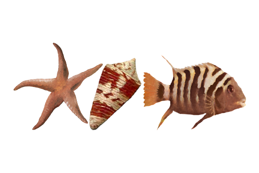 Seashells, Fish, and Beach Sea Life Pattern 02 Artwork