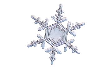 Winter and Holiday Snowflake 01 Artwork