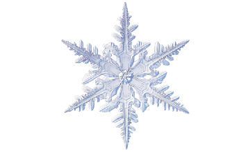 Winter and Holiday Snowflake 06 Artwork