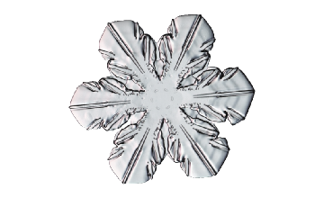 Winter and Holiday Snowflake 09 Artwork