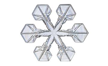 Winter and Holiday Snowflake 20 Artwork