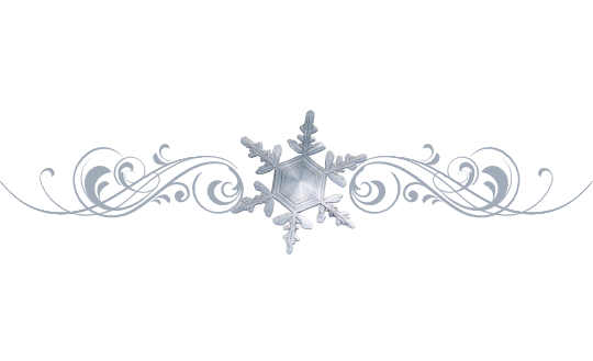 Winter and Holiday Snowflake Pattern 04 Artwork