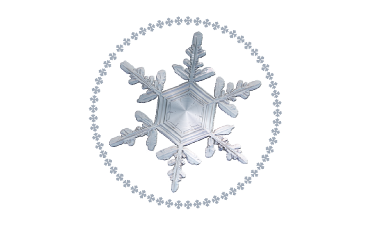 Winter and Holiday Snowflake Pattern 08 Artwork