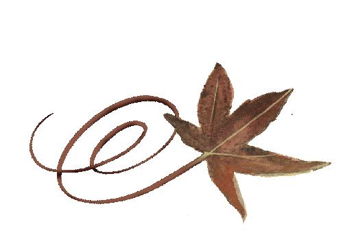 Spring Flowers, Autumn Leaves, Grapes Swirly Buckeye Leaf Artwork