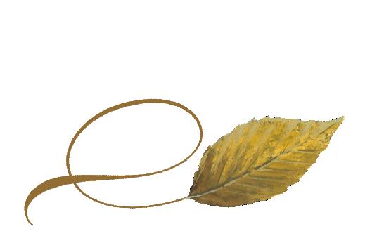Spring Flowers, Autumn Leaves, Grapes Twisty Beech Leaf Artwork