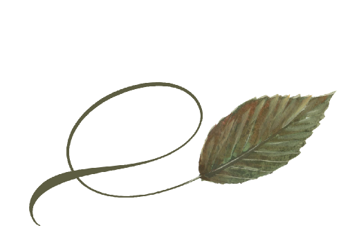 Spring Flowers, Autumn Leaves, Grapes Twisty Birch Leaf Artwork