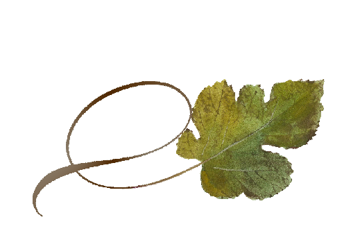 Spring Flowers, Autumn Leaves, Grapes Twisty Mulberry Leaf Artwork