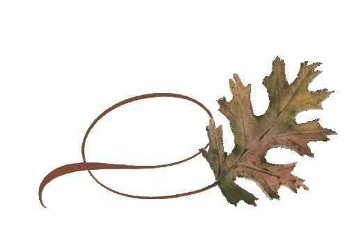 Spring Flowers, Autumn Leaves, Grapes Twisty Pin Oak Leaf Artwork