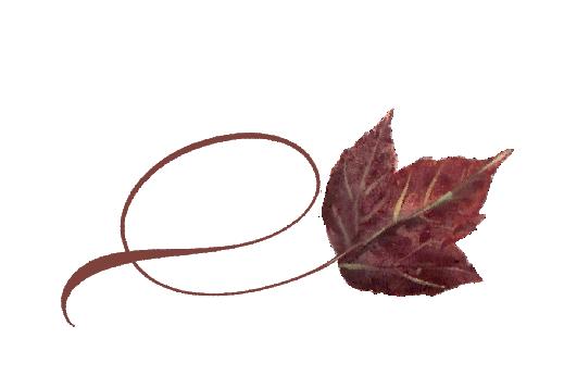 Spring Flowers, Autumn Leaves, Grapes Twisty Poplar Leaf Artwork