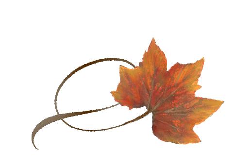 Spring Flowers, Autumn Leaves, Grapes Twisty Rock Maple Leaf Artwork