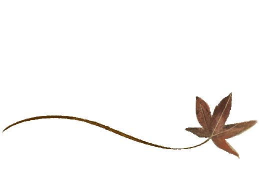 Spring Flowers, Autumn Leaves, Grapes Wispy Buckeye Leaf Artwork