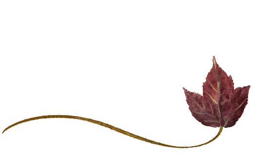 Spring Flowers, Autumn Leaves, Grapes Wispy Poplar Leaf Artwork