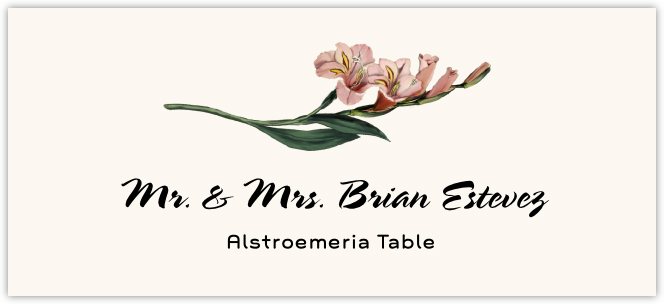 Alstroemeria Place Cards