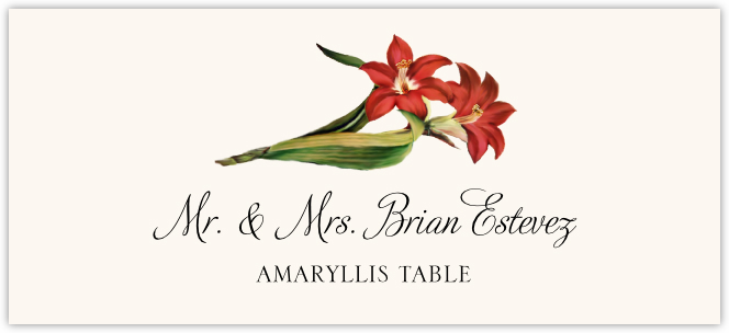 Amaryllis Place Cards
