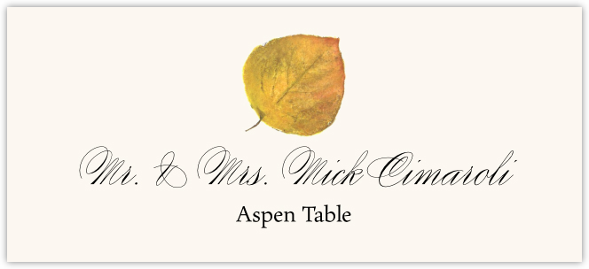 Aspen Colorful Leaf Place Cards