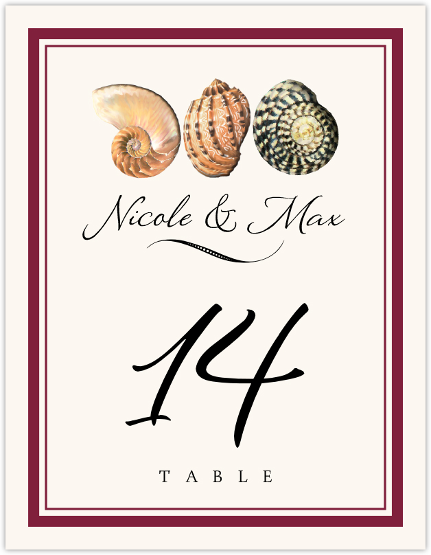 Conch Pattern Table Numbers