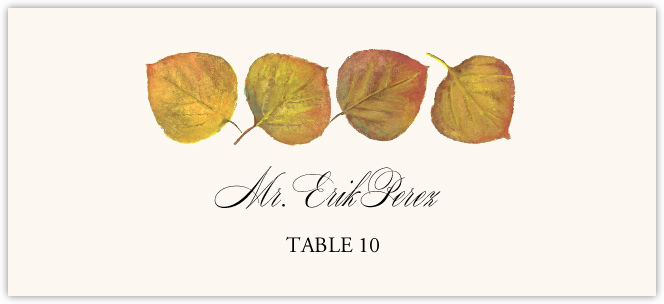 Leaf Pattern Assortment Place Cards