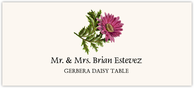 Gerbera Daisy Place Cards