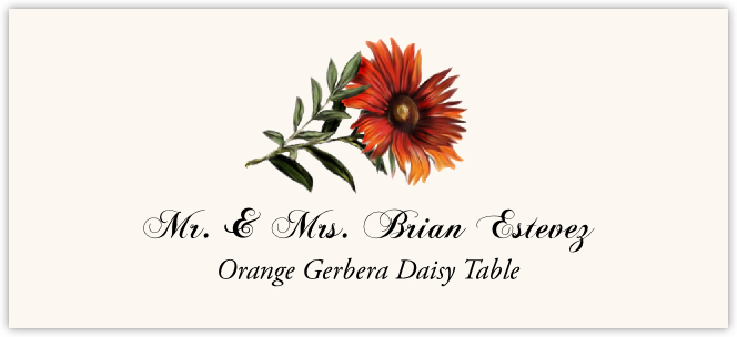 Orange Gerbera Daisy Place Cards