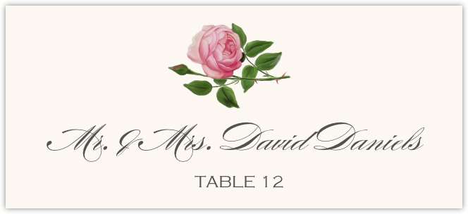 Pink Tea Rose Place Cards