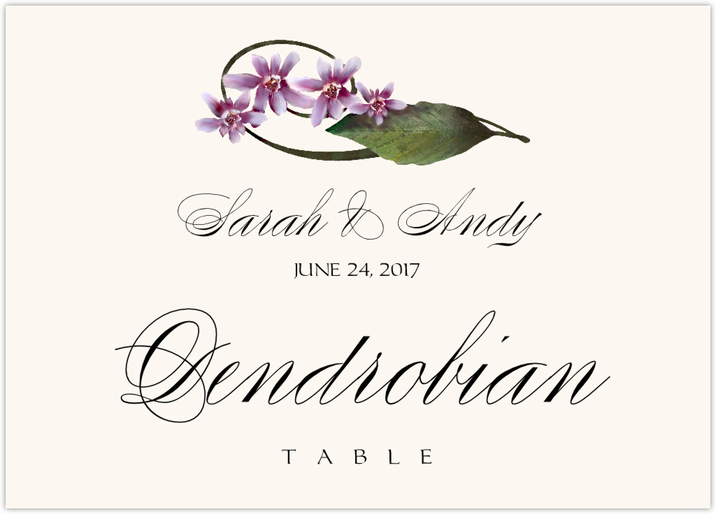 Purple Calypso Orchid Table Names
