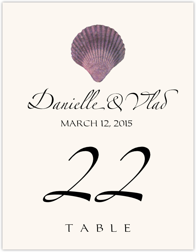 Seashell Assortment 02 Table Numbers
