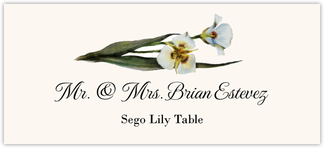 Sego Lily Place Cards