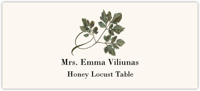 Honey Locust Twisty Leaf Place Cards
